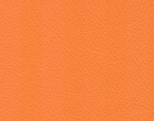 Karlo 256 orange.jpg